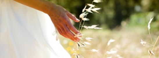 תמונה של אישה העומדת בשדה. התמונה ממחישה כיצד אנו עובדים למען פיתוח הקיימות והגנה על הסביבה
